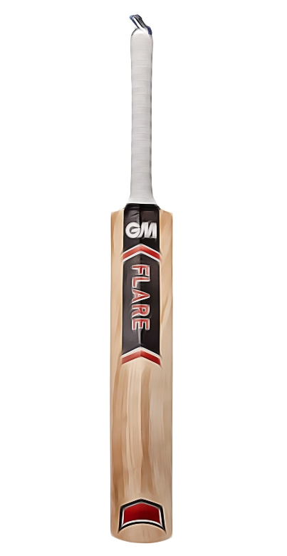 GM Sting Kashmir Willow Cricket Bat Short Handle