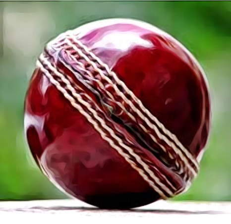 Raisco RB01 Leather Match Four Piece Cricket Ball