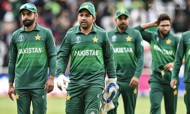 Fan Filed Petition to Ban Pakistan in World Cup