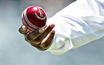 Wax Applicators Developed for Shining Cricket Balls