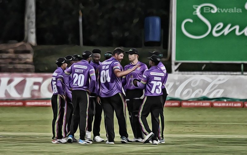 Lions and Dolphins Bag Home Domestic Championship